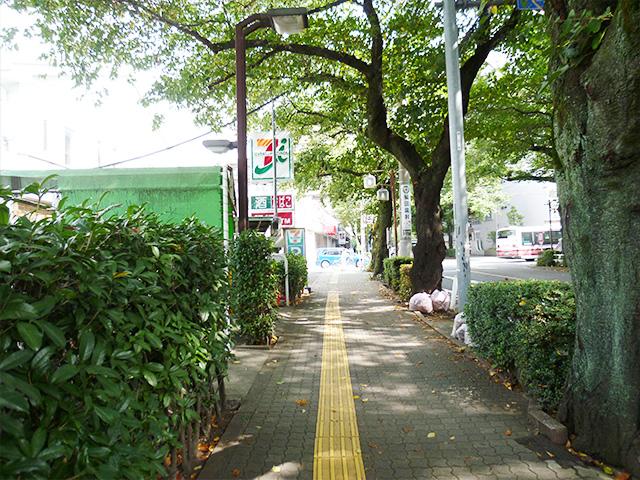矢川通り歩道